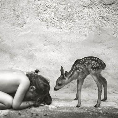 expo alain laboile